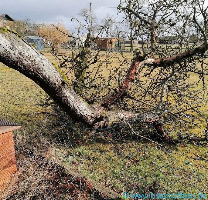 Sturm Sabine Folgen Blaubeuren